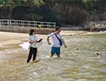 2019年香港泳灘水質年報今天(2020年4月1日)發表
