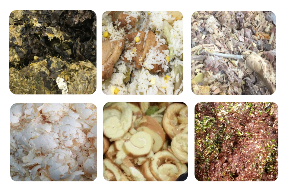 Images of Typical Food Waste Coming from C&I Sectors