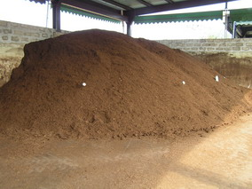 Image of Compost at Maturation Shed