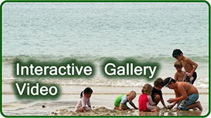 Interactive Gallery-Video