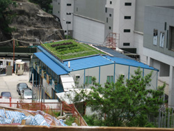 Green roof for site office